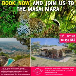 Book With Us Today For Experience Like No Other - Join A Shared Road Package To The Masai Mara ~ 10th – 11th January