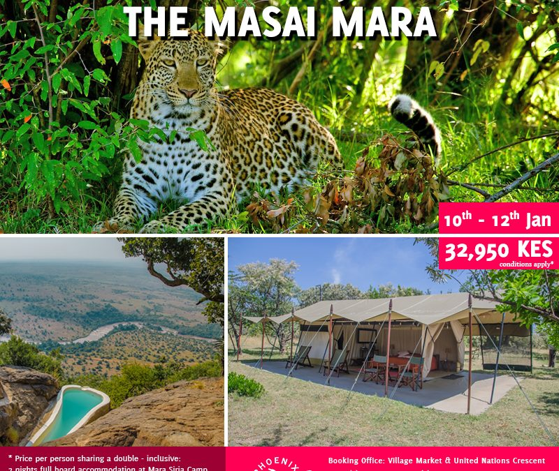 Book With Us Today For Experience Like No Other – Join A Shared Road Package To The Masai Mara ~ 10th – 11th January