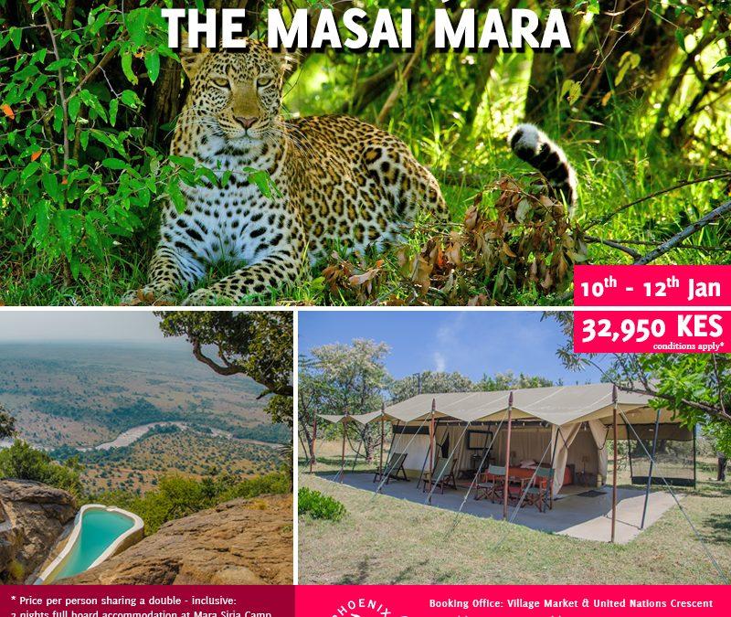 Buchen Sie mit uns heute ein Gruppen Package in die Masai Mara ~ 10. – – 12. Januar
