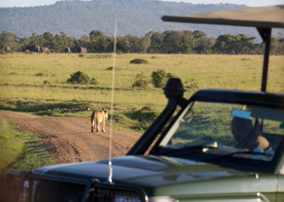 Game Drives (9)