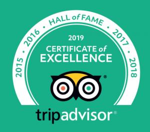2019 hall of fame tripadvisor
