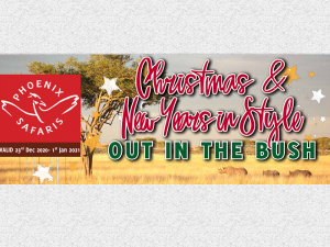 Christmas & News Years in Style - Enjoy Discounts
