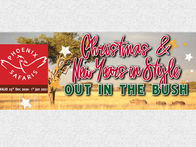 Christmas & News Years in Style – Enjoy Discounts