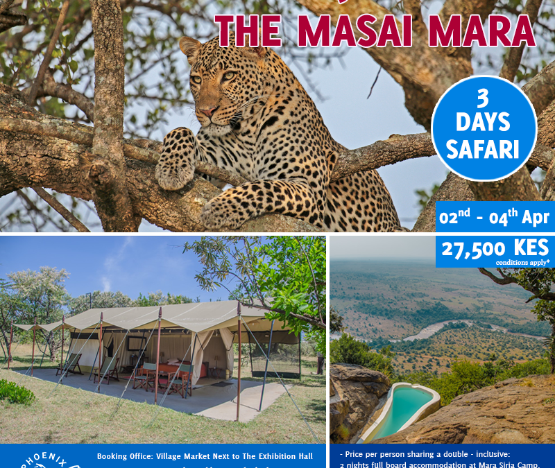 Book With Us Today For Experience Like No Other – Join A Shared Road Package To The Masai Mara ~ 02nd – 4th April