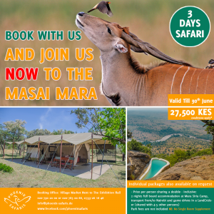 Book With Us Today For Experience Like No Other – Join A Shared Road Package To The Masai Mara Now!