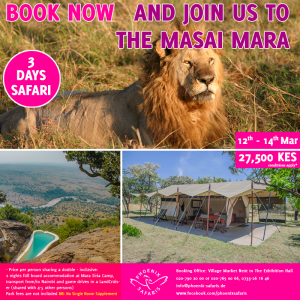 Book With Us Today For Experience Like No Other – Join A Shared Road Package To The Masai Mara ~ 12th – 14th March