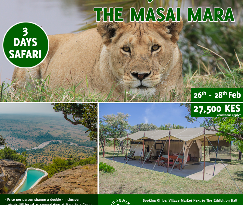 Book With Us Today For Experience Like No Other – Join A Shared Road Package To The Masai Mara ~ 26th – 28th February