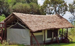 Upgraded & New Features On Deluxe Tents