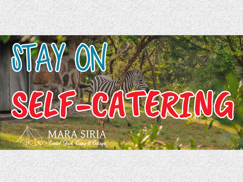 Stay On Self-Catering